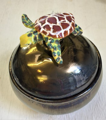Toti the turtle